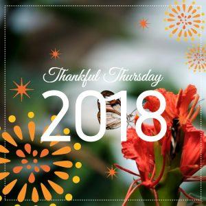 Thankful Thursday : Week 12