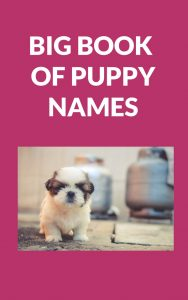 The Big Book of Puppy Names Image